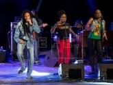 Reggae da Jamaica é escolhido Patrimônio Imaterial da Humanidade pela Unesco