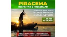 Pesca predatória é proibida durante a piracema no Maranhão
