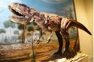 Museus do Maranhão têm visitas gratuitas com dinossauro, vida no século 19 e arte