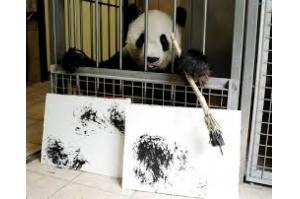 Zoológico de Viena vende pinturas feitas por panda