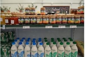 Produção orgânica está em expansão no país