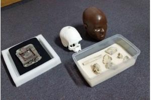 Fragmentos do crânio de Luzia são encontrados no Museu Nacional