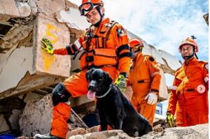 Sobem para seis os mortos do desabamento de prédio em Fortaleza