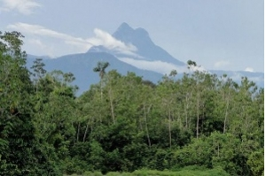 Recanto sagrado dos yanomami, Pico da Neblina deve ser reaberto