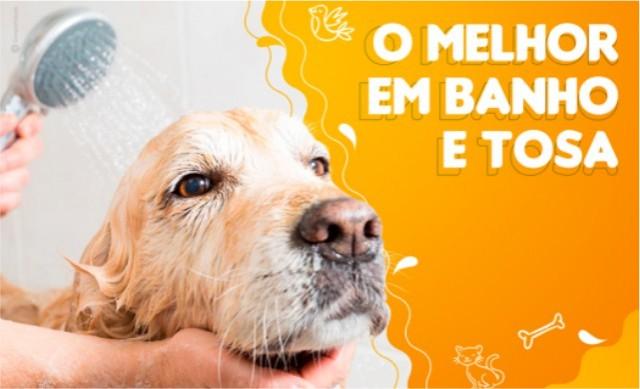 Banho + Tosa + Tosa Higienica + Escovação de Dente + Hidratação De R$ 75,00 por R$ 45,00